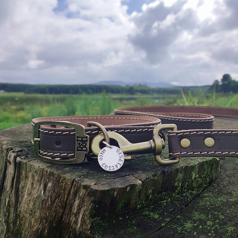 Bailey and Hound Milo Brass Dog Tag on Stitched Leather Collar with Leather Dog Leash Attached