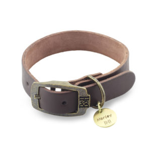 Bailey & Hound Plain Small Leather Dog Collar with Tag